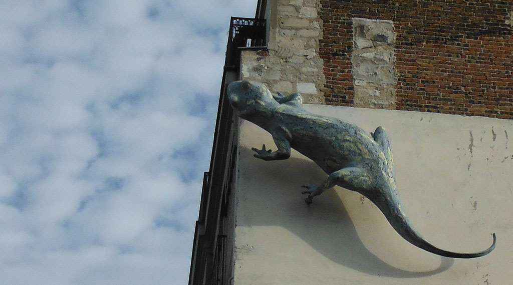 Lizard on Paris building