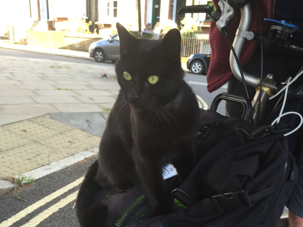 london-cats-t-bag